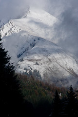 Nantaux (sharpneil) Tags: trees snow france mountains alps clouds neil sharp morzine sharpographycouk