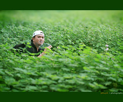 Anh Su Mai (Jethuynh | 0903689703) Tags: green canon outdoor smoke yanming 50d offine hutthuoc
