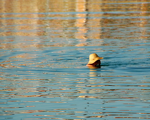 Straw Hat Swimming