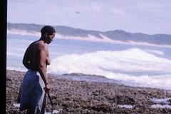 Muschelsammlerin auf dem Riff von Ponta do Ouro