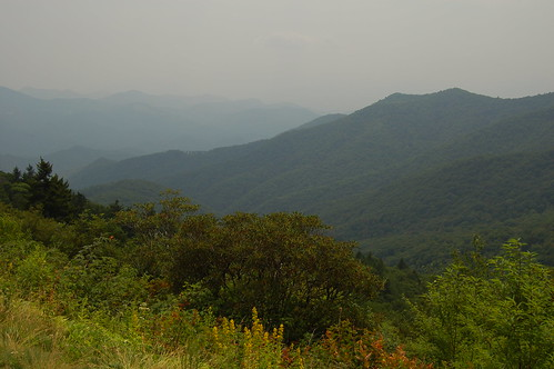 Blue Ridge Overlook VII