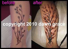 www.dawngrace.com (professional tattooing by dawn grace) Tags: trees red roses woman india chicago black flower color colour tree art feet floral up leaves rose tattoo female work cherry stars asian foot grey dawn star back leaf illinois asia artist branch blossom indian roots ivy grace tattoos professional hips cover ribs twig buds swirl swirls re bud tatoos rib hip henna nouveau tatoo ankle shoulder deco twigs mehndi fower tattooing coverup realistic tatooing rework tatooer