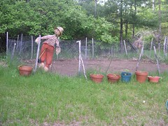 Guarding the Garden