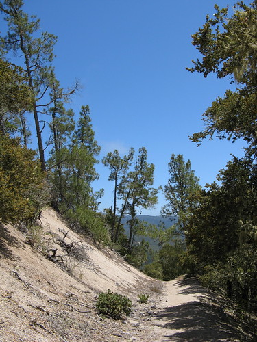 Westridge Trail, heading down