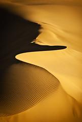 ماسه های طلائی (Mehrnoosh Jalil) Tags: سکوت کویر مهرنوش