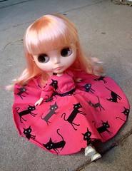 J.B. in a kitty dress