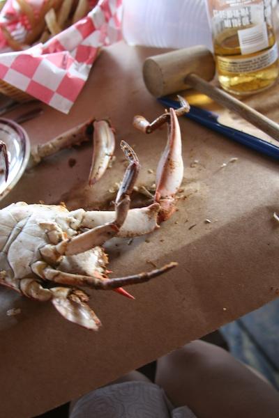 540706798 eaf2379987 o grabbing crab