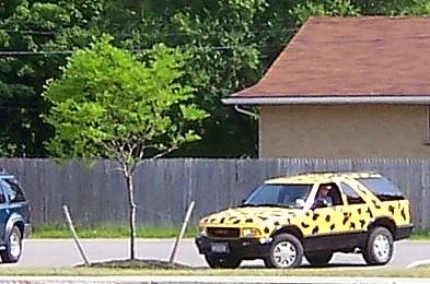 Cheeta Mobile