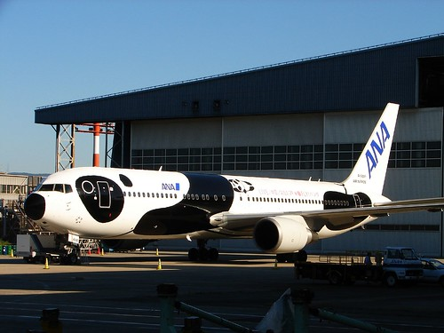 ANA Panda airplane today Delivery!! -- air airplane boeing plane aviation aircraft craft airport jet today panda ana