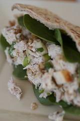 Shreddy Apple-Walnut Chicken Salad