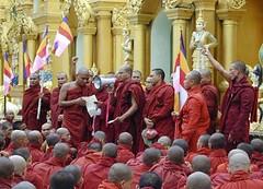 burma-monks
