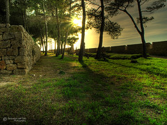 Green sunset (Salva del Saz) Tags: sunset espaa verde green atardecer spain olympus alicante hdr highdynamicrange denia c8080wz c8080 supershot 5xp salvadordelsaz superbmasterpiece salvadelsaz