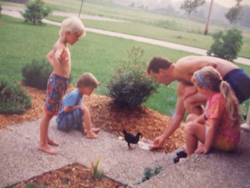 chickens circa 1992