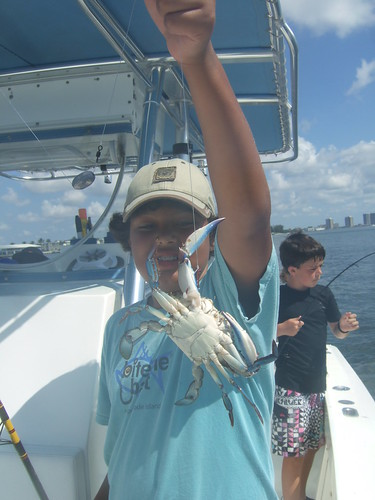 Dakota catches a blue crab!