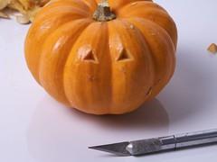 TinyPumpkinArmy - 10