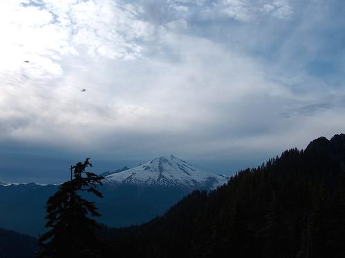34-Mt Baker Mosquitos