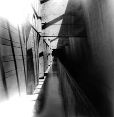 Corridor (J.T.R.) Tags: film architecture analog holga toycamera universityoftoronto lightleak neopan brutalism holga120s analogkid architectureasamoralforce louiskahnesque likethesalkinstitutebutpoorlyexecutedandscary utscarborough uglybutcompelling