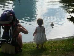 cas and charlotte with ducks (alist) Tags: baby girl boston toddler alist robison bostonmass charlottelasky cassiecleverly alicerobison kerriekephart ajrobison charlottehaydenlasky ericlasky