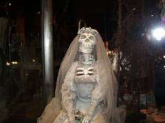 Anorexic Bride (Smabs Sputzer) Tags: wedding window skeleton skull bride honeymoon dress belgium belgie display brugge gone taste buck too far anorexic questionable starved phoney spooners nuptuals havisham slimming spoonerism