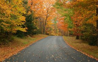 Rainy Day Autumn Drive