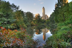 south central park (Wyatt Kostygan) Tags: park city lake reflection green tower skyline pond central