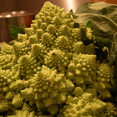 fractal vegetable (Martin Deutsch) Tags: food macro green vegetable fractal romanesco romanescobroccoli romancauliflower