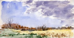 Edge of MSU (Artist Naturalist-Mike Sherman) Tags: november autumn art watercolor painting transparent pleinair inghamcounty midmichigan