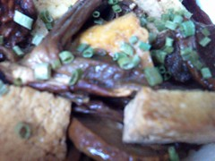 Tofu ai Funghi Porcini