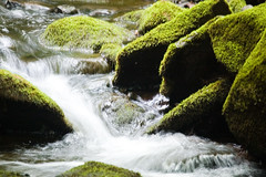 I can't catch the flow of the water (Ari Hahn) Tags: wet water waterfall waterfalls tilt soe naturesfinest mywinners waterbwet