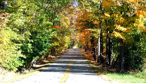 Another Fall Road