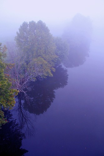 A Misty River Mood