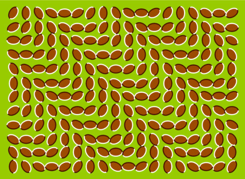 Wavey Motion Pattern Crazy Optical Illusion