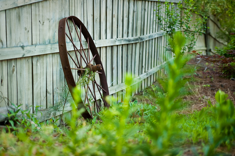 Day 212: Wagon Wheel