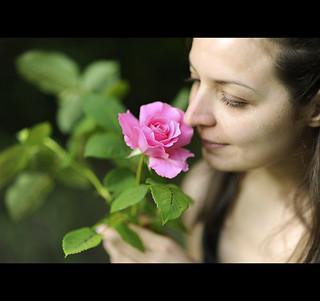 Rose against Rose