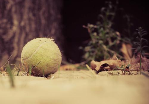 La pelota olivadada