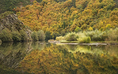 Autumn reflection (elosoenpersona) Tags: autumn reflection fall rio del forest asturias colores bosque reflejo otoo cangas narcea elosoenpersona pilotuerto pilutuerto