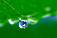 last drop...
