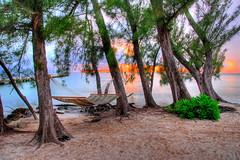 Hammock in paradise - by slack12