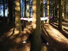 Where am I? (sparkypics) Tags: wood trees light shadow brown game cold feet forest dark fun spring hands missing arms legs hide bark hiding dappled