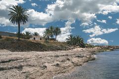 Playa de las Palmeras (marathoniano) Tags: espaa naturaleza beach nature see mar spain playa andalucia palm espagne palmera almera mediterrneo marathoniano pulp
