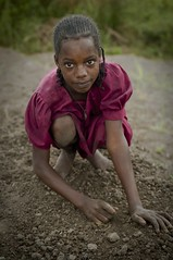 Silent Success: Mbororo Refugees in Cameroon (UNHCR) Tags: school girls girl youth education silent refugees teenagers land agriculture success chores unhcr cameroon mbororo unrefugeeagency unitednationshighcommissionerforrefugees frednoy