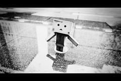2010.11.15 Standing in the rain (Goston) Tags: rain toys taipei  danboard   sonynex3 sonye16mm128