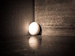 nascere esistere e attendere (vocesilente88) Tags: nascita attesa uovo solitudine nascere esistere