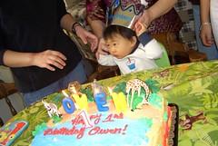 Birthday prince