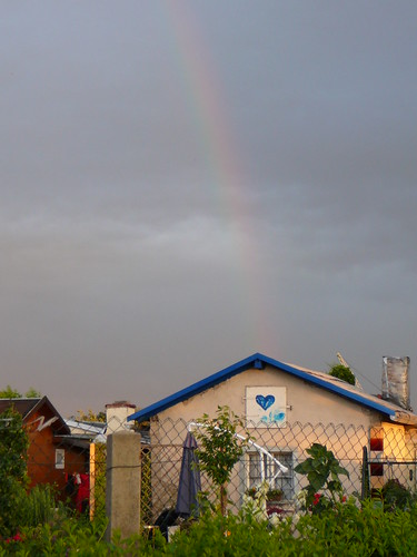 Regenbogen (05)