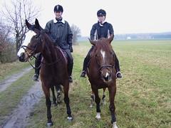 Reiten im Frhjahr (enidan78) Tags: pferde reiten scharnebeck trakehner