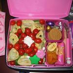 laptop_lunchbox 2007.08.15 thumbnail