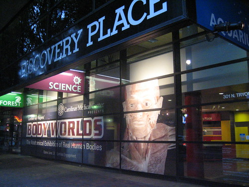 Body Worlds Traveling Museum of Human Bodies
