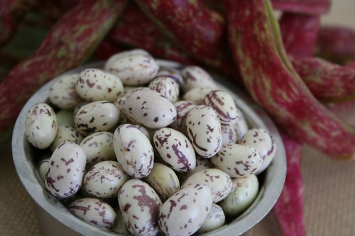 Cranberry Beans: shelled