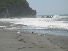 Cali coastline